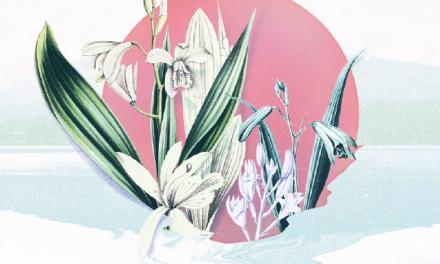 Exposition – Se soigner au Japon  : plantes et pharmacopée (XVIIe-XXe siècle)