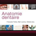 Publication | Anatomie dentaire