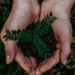 Notre environnement, notre santé