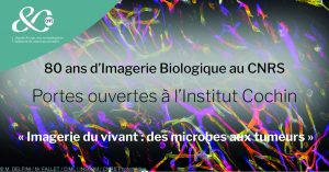"""""""Des microbes aux tumeurs"""" : Portes Ouvertes à l'Institut Cochin @ Institut Cochin"""