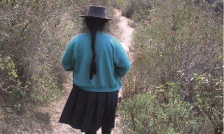 """Ouvrage """"Sur les sentiers de la violence. Politiques de la mémoire et conflit armé au Pérou"""""""
